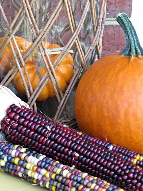 Pumpkins, Indian Corn,