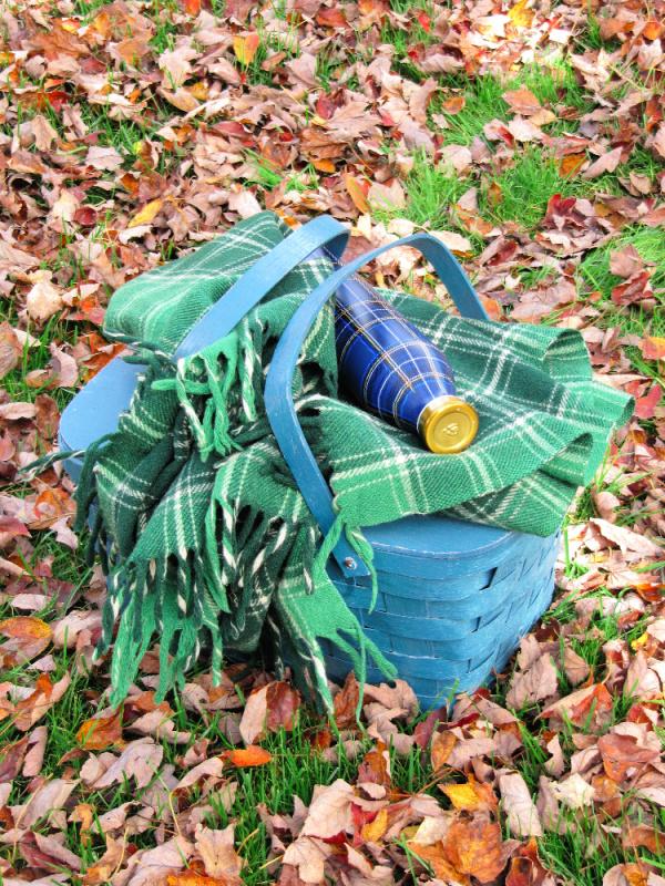 Green tartan blanket