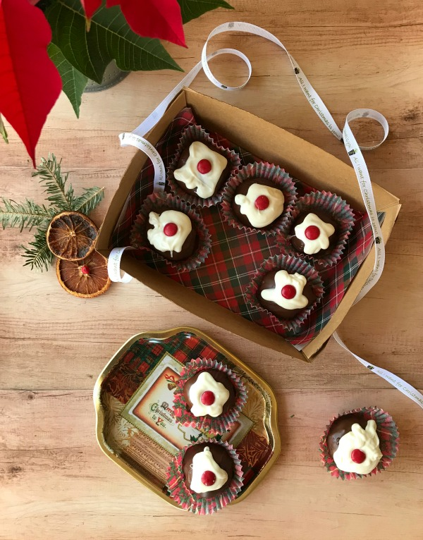 Christmas Pudding Chocolate Covered Brownie Bites