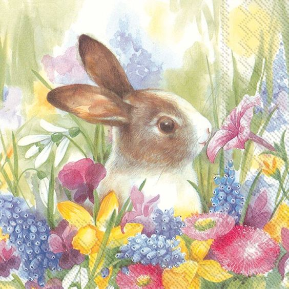 Bunny and spring flowers