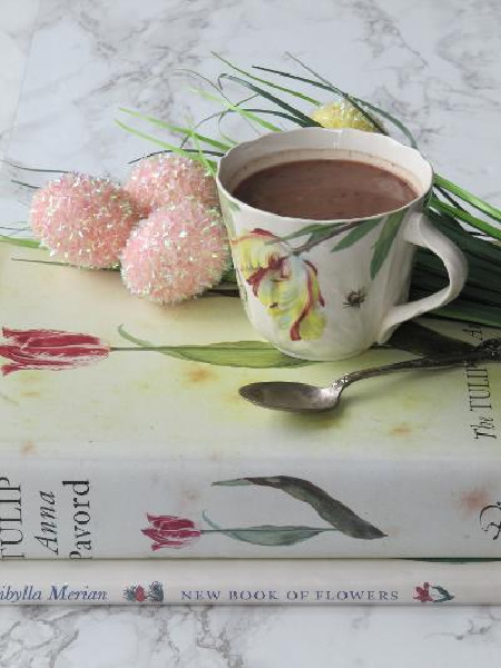two books with a cup of hot chocolate on top