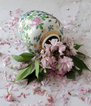cherry blossoms in a vintage chinoiserie vase