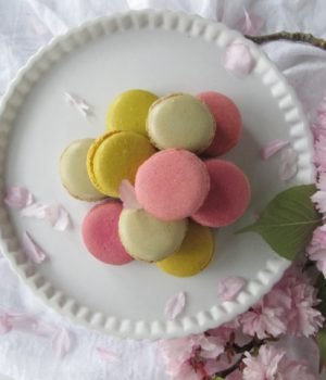 French macaron on a white cake plate with pink cherry blossoms pinecones and acorns