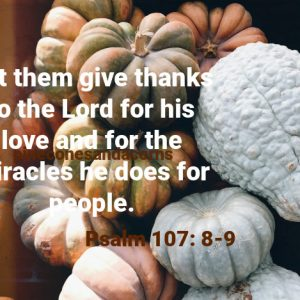 Let them give thanks to the Lord for his love and for the miracles he does for people.
